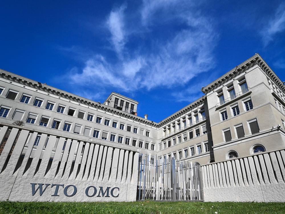 pasaulio prekybos organizacijos ginčų sprendimo sistema johnsonas kontroliuoja akcijų pasirinkimo sandorius