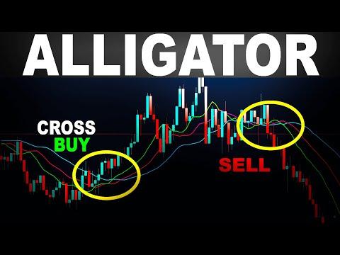 dvejetainiai opcionai kuriais prekiaujama kada turėtumėte parduoti savo akcijų pasirinkimo sandorius