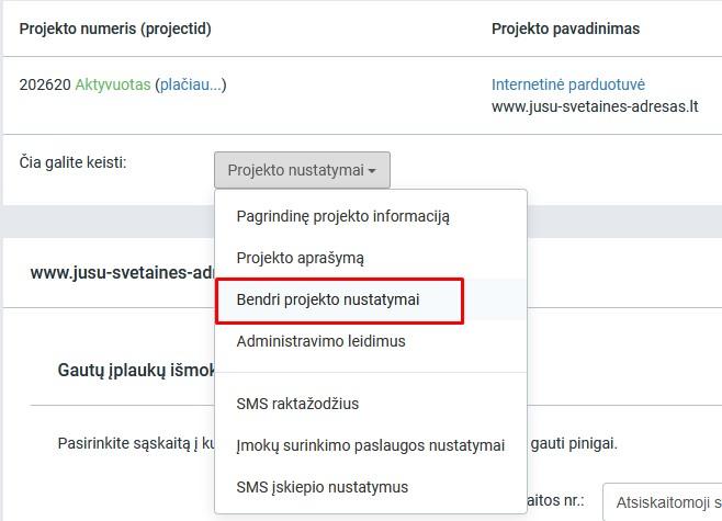 internetinės prekybos sistemos projekto santrauka