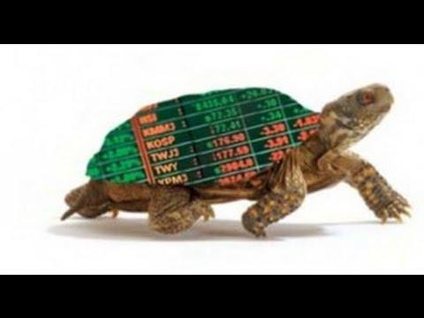 akcijų pasirinkimo sandoriai meksika prekybos sistema ftse mib